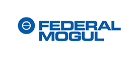 bf79a372-e2bb-4167-9532-2be0513b894f_2-Federal-Mogul.jpg
